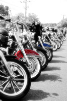 Harleys Lined Up